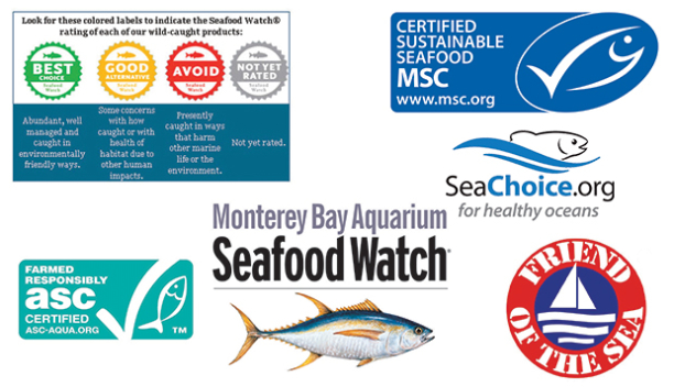 How to identify sustainable seafood and why it 39 s important for Most sustainable fish